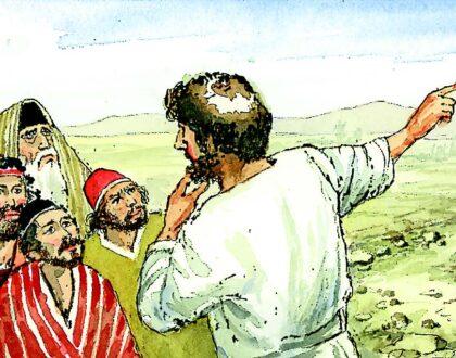 11 de diciembre | 3er Domingo de Adviento