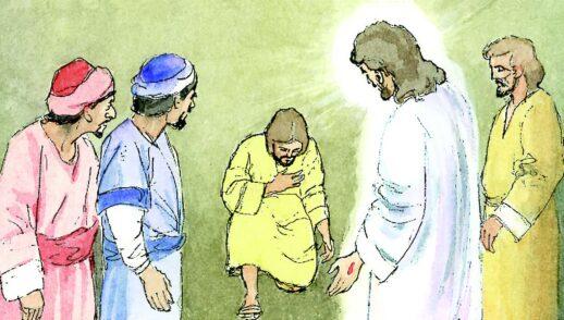 24 de abril | 2o Domingo de Pascua o de la Divina Misericordia