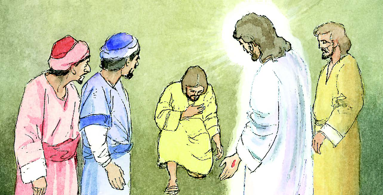24 de abril   2o Domingo de Pascua o de la Divina Misericordia